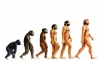 Addendum to Evolution: Origins of the World